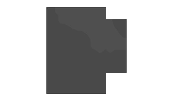 Der Alarm Profi